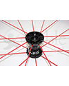24 in. (540) Spinergy 18 Spoke Spox Wheelchair Wheel and Tire - close-up view of red spokes and black hub