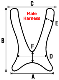 Male Harness Specifications